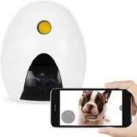 FunPaw Camera With Laser