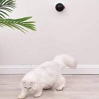 PetDroid Boltz Motion Activated Laser Toy