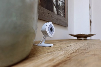 Arlo Q Pet Camera