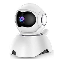 Deyan Camera For Pets Summary