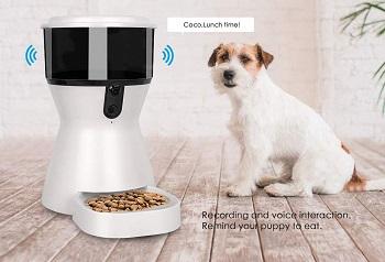 Feastoria Dog Cam Feeder Review
