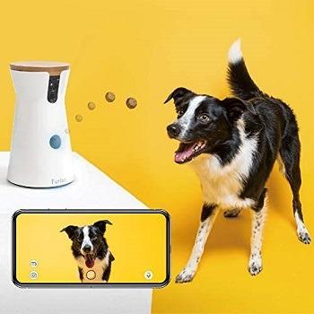 Furbo Alexa Pet Camera