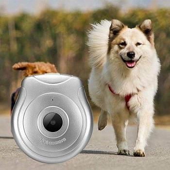 Hanyan Digital Collar Cam review (1)