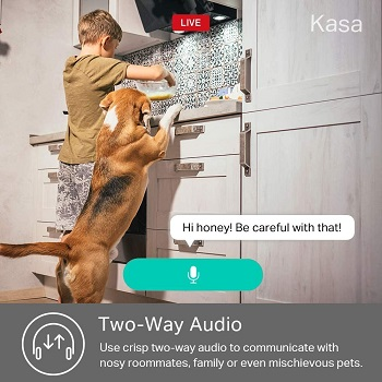 Kasa Interactive Indoor Cam