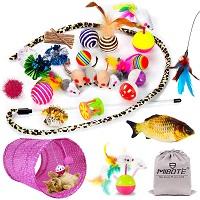 Mibote 28 Pcs Toys Pack Summary