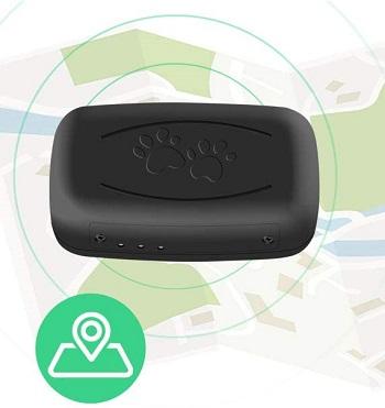 Moglor GPS Cat Tracker