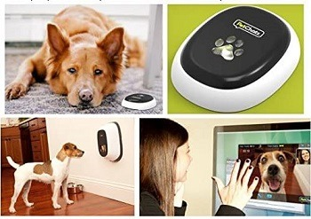 PetChatz HDX Interactive Pet Cam Review