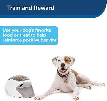 PetSafe Manners Minder For Dogs