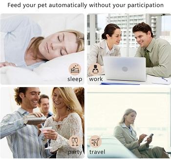 Peteme Dog Feeder