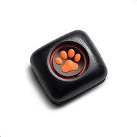 PitPat 2 Dog Activity Monitor Summary