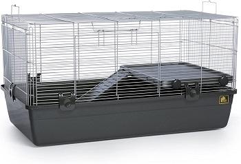 Prevue Small Ferret Home Review