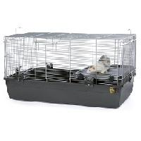 Prevue Small Ferret Home Summaryy