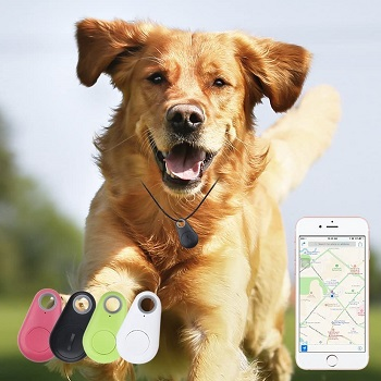 Spy GPS Cat Tag Tracker Review