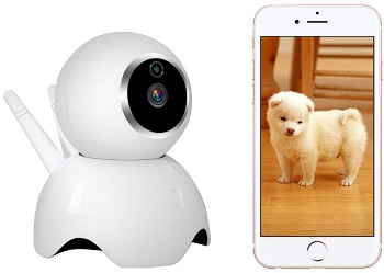 VStoy Pet Camera Review