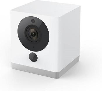 Wyze Dog Camera Review