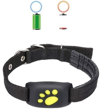 Yunabbo Cat Collar Review