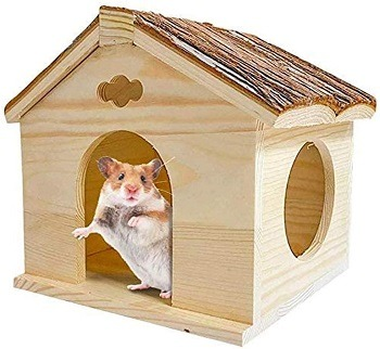 BLSMU Hamster House Review