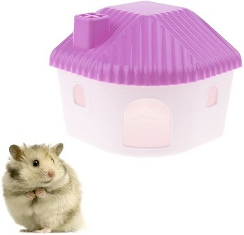 CoscosX Small Hamster House Review