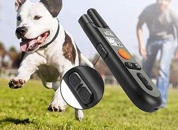 DogCare Training Shock Collar