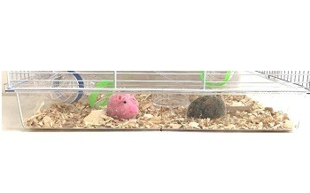 Mcage Hamster House Review