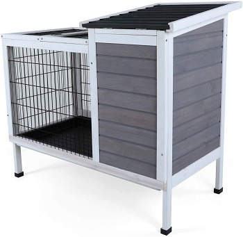 Petsfit Cage For Rats Review