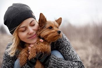 Poof Bean Pet Activity Tracker