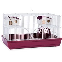 Prevue Hendryx Hamster Cage Summary