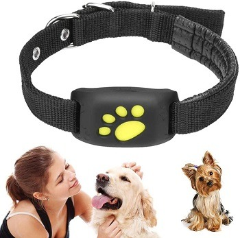 Ruimingt Pet Collar GPS Review