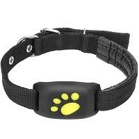 Ruimingt Pet Collar GPS Summary
