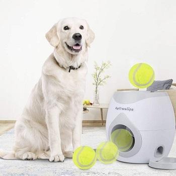 4Pawslife Automatic Dog Feeder