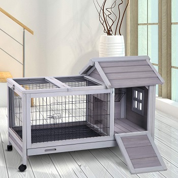 Aivituvin Wooden Small Animal Hutch Review