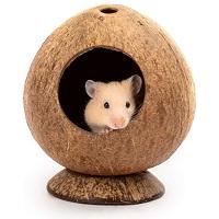 Andwe Coconut Hut Hamster House Summary