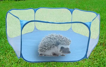 Best Hedgehog Cage Playpens Review