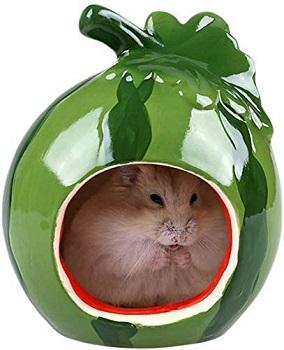 Gutongyuan Small Hamster House Review