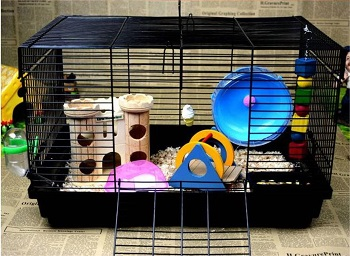 Hamiledyi Cute Hamster Home Review