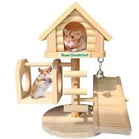 Hamiledyi Small Hamster House Summary