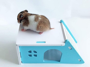 Hamiledyi Wooden Hamster Hideout Review