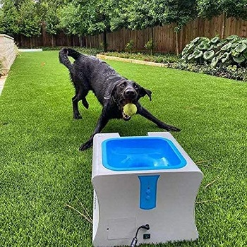 IDOGMATE Dog Ball Launcher