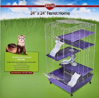 Kaytee Ferret Home Plus Review