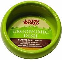 Living World Small Green Bowl SUmmary