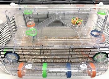 Mcage Transparent Dwarf Hamster Cage