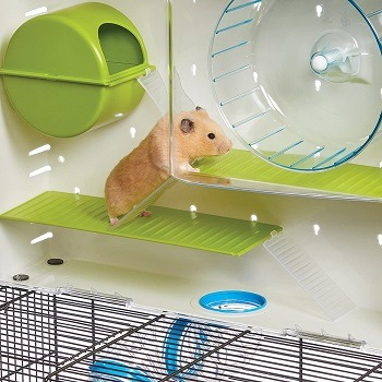 MidWest Tunnel Hamster Cage Review