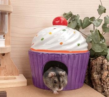 Niteangel Ceramic Hamster Hideout Review