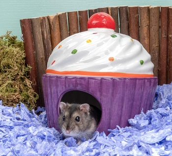 Niteangel Ceramic Hamster Hideout