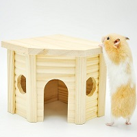 Niteangel Cute Hamster House Summary