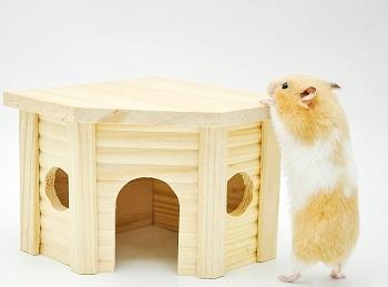 Niteangel Cute Hamster House