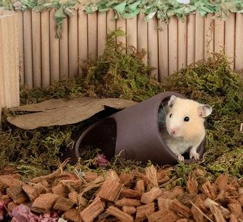 Niteangel Tunnel Hideout House