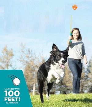Outward Hound Dog Ball Launcher