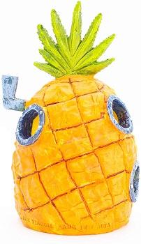 Penn-Plax Sponge Bob Pineapple House Review