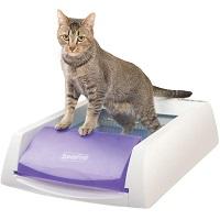 PetSafe ScoopFree Automatic Cat Litter Box Summary